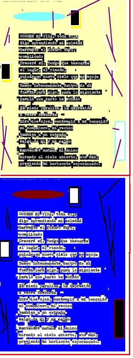 03-cogere-mi-vida-2.jpg