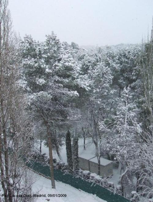 nieve-en-madrid-111