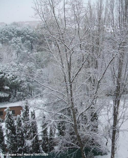 nieve-en-madrid-3