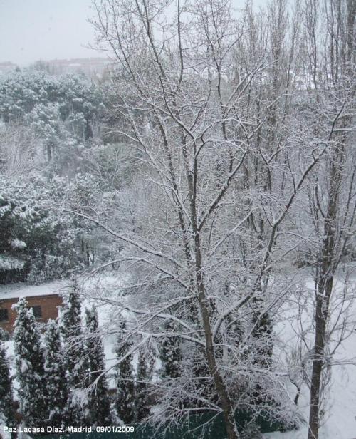 nieve-en-madrid-3
