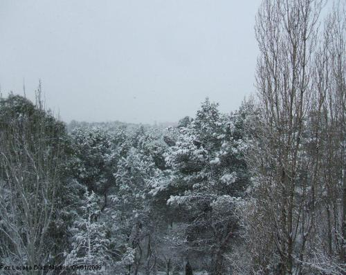nieve-en-madrid-5