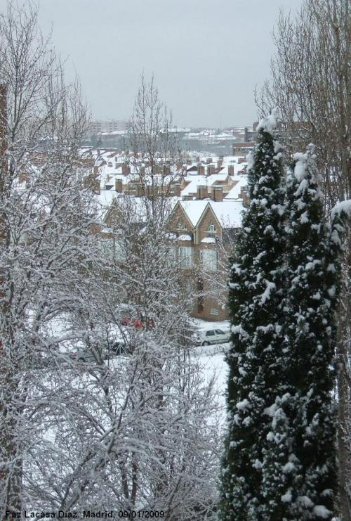 nieve-en-madrid-6