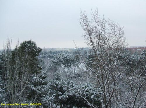 nieve-en-madrid-7